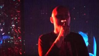 The Smashing Pumpkins - Pale Horse - Brixton Academy , London November 15, 2011