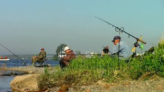 Рыбалка с берега Волги на фидер Поселок Васильево Татарстан Июнь 2021