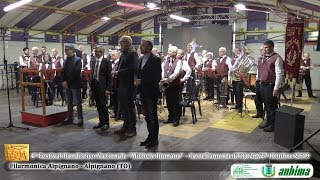 """La Filarmonica di Alpignano al Festival """"Michele Romana"""""""