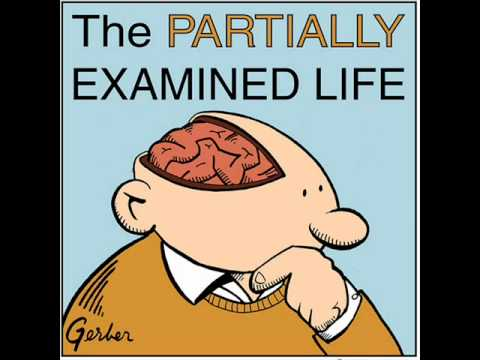 Partially Examined Life podcast - Foucault - Discipline & Pu