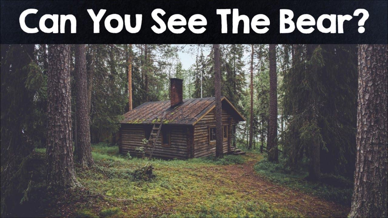 Prueba: averigua si puedes adivinar todos los animales escondidos en estas imágenes