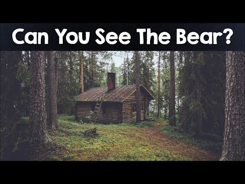 Nobody Can See All The Hidden Animals  Optical Illusions  Brain Teasers