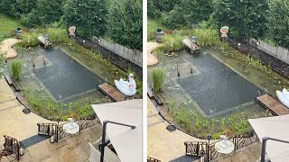 Couple Build Natural Swimming Pool In Garden