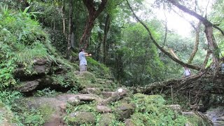 Living Root Bridge Mawlynnong Cherrapunjee Sohra Shillong Meghalaya Halfway Heaven Incredible India