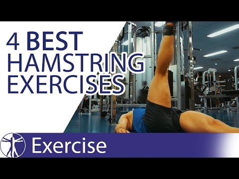 The 4 Best Hamstring Exercises | Hamstring Training