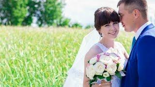 Свадьба Алексея и Марины [24.06.2016 г.]Видеограф - Александр Кузнецов 89278540103