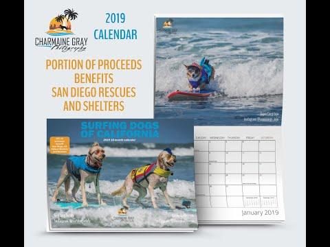 2019 Surfing Dogs of California calendar