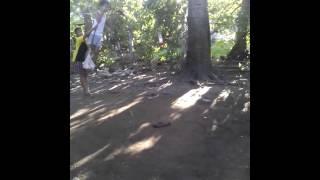 Mga taong walang magawa sa buhay