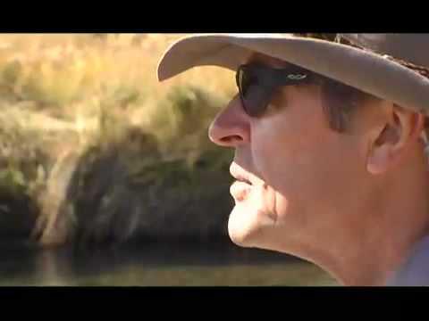 Fly Fishing on Flat Creek - YouTube