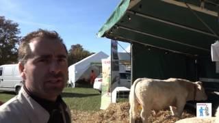 Bovins charolais Expo-vente Montmirail (51) 30 oct 2016