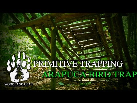 How To: Bushcraft The Arapuca Bird Trap