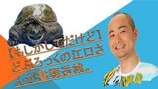 お笑いコンビどぶろっくの江口直人が特定外来生物のカミツキガメを無許...
