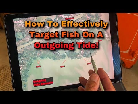 How To Fish Outgoing Tides Effectivily - Flats Class YouTube