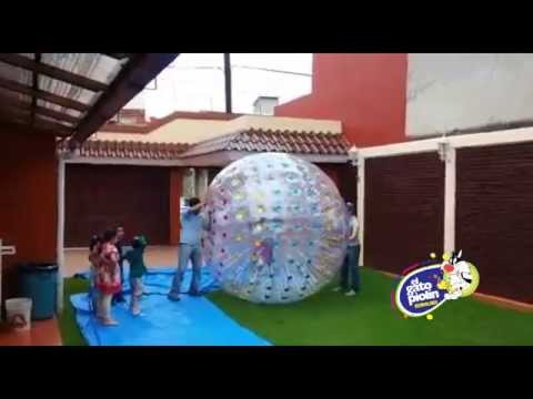 ZorB Ball Color