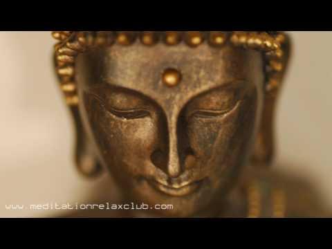 8 HOURS Asian Meditation Music & Zen Tibetan Buddhist Music, Nature Sounds