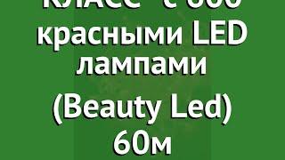КЛИП ЛАЙТ ПРЕМИУМ КЛАСС с 600 красными LED лампами (Beauty Led) 60м обзор CL-EST600-10-1R