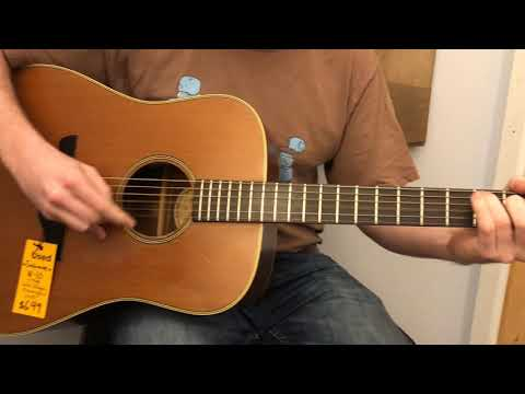 Takamine N-10 Dreadnought Demo