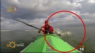 หนุ่มพายเรือคายัคหนีสุดชีวิต หลังโดนฉลามยักษ์ไล่งับ