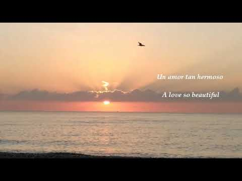 Michael Bolton - A Love So Beautiful (Lyrics)
