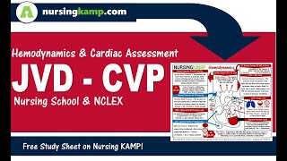 What is JVD CVP Hemodynamic Nursing KAMP NCLEX  2020 ICU CCU