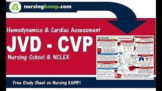 What is JVD CVP Hemodynamic Nursing KAMP NCLEX  2020 ICU CCU