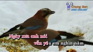 [KARAOKE HD] Không Bao Giờ Quên Anh - Beat Cẩm Ly