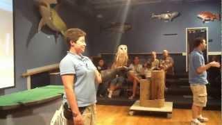 Alba The Barn Owl At Nc Aquarium Show