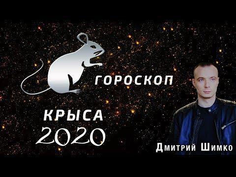 Гороскоп Крыса -2020. Астротиполог, Нумеролог - Дмитрий Шимко