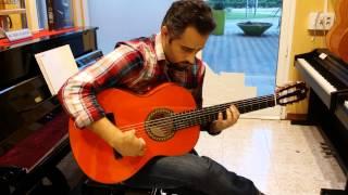 Guitarra flamenca Alhambra 4F, probando.Que creen?