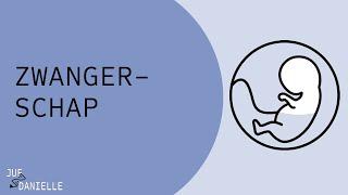 Zwangerschap: trimesters en alarmsymptomen