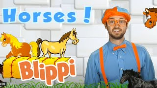Learning About Horses With Blippi | Animals For Kids | Educational Videos For Children