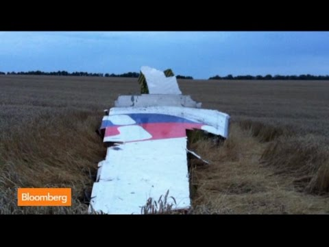 Malaysia Flight MH17 Wreckage in Ukraine: New Images