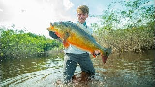 The Fish That Broke The Record -- (Amazon River BEAST)
