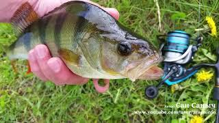 Посмотри видео про рыбалку, когда нет времени выехать или погода не позволяет