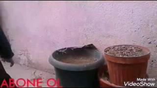 Şişe çevirme 5 litrelik Video