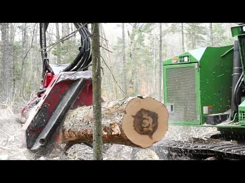 Hardwood Harvesting