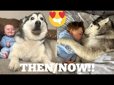 The Best 2 Years Of Our Life! [CUTEST VIDEO EVER!]