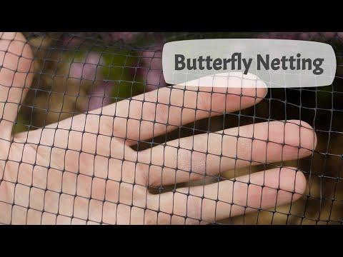 Butterfly Netting Guide