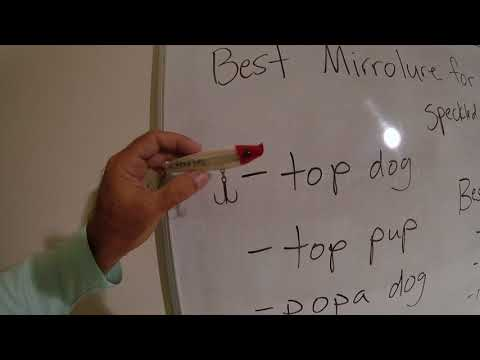 Best Mirrolure For Snook Redfish Speckled Trout Tarpon