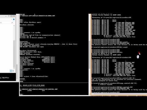 recovery manager scenario 8   restore recover lost control DBF with multiplexed control DBF copy