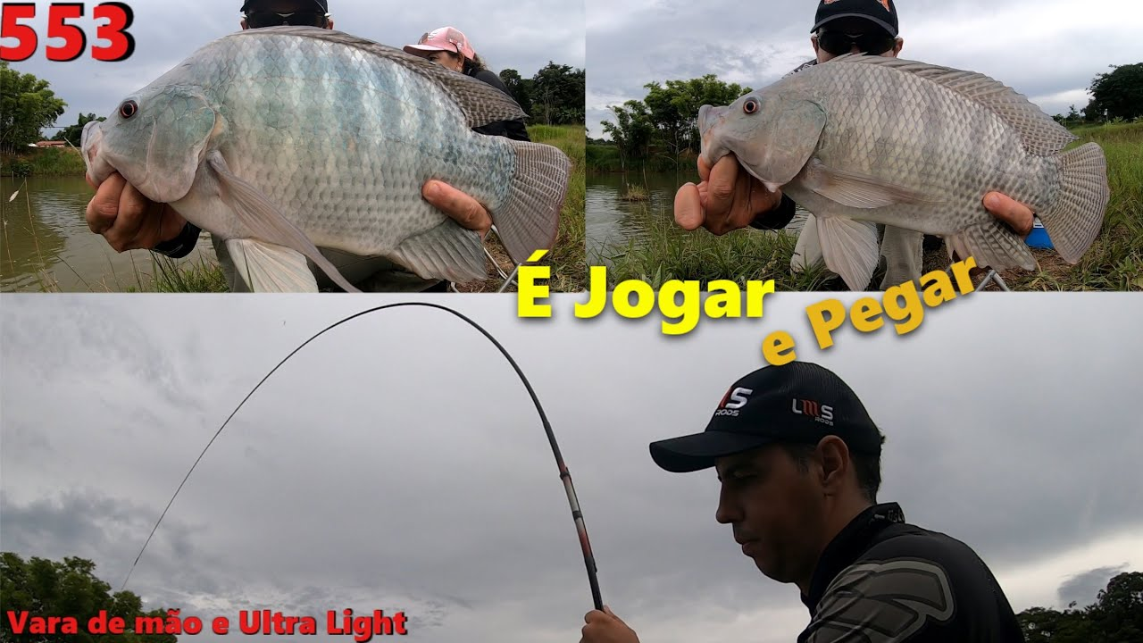 Pescaria Raiz de Tilápias e Carpas - Fishingtur na TV 553