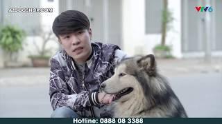 AZPET SHOP - Trại Nhân Giống Chó, Mèo Cảnh Hàng Đầu Việt Nam