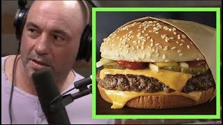 Joe Rogan - Fast Food Additives - Fight Companion