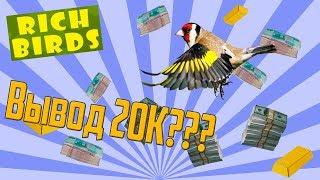 СТАРЫЙ АККАУНТ С 20К рублей НА Rich Birds