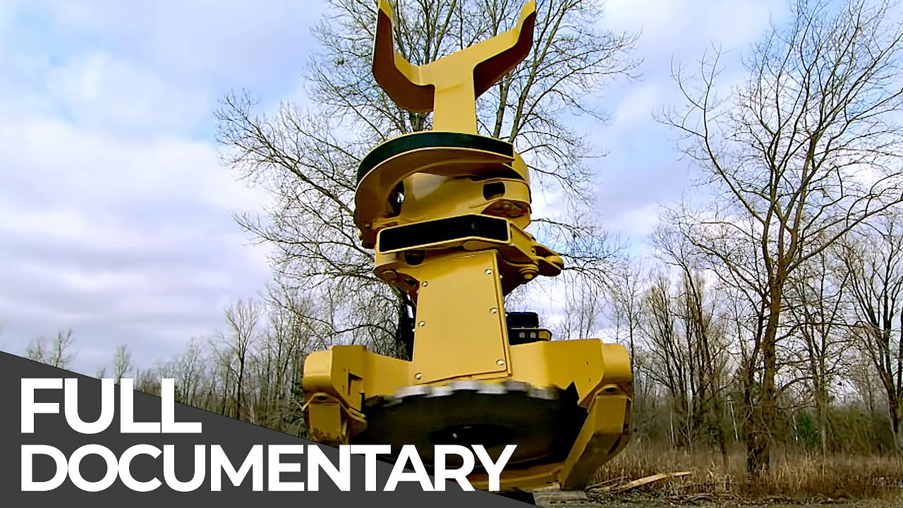 HOW IT WORKS | Feller Buncher Logging Machine, Stunt Plane, Tugboat and More | Free Documentary