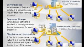 Windows Server 2008 Licensing