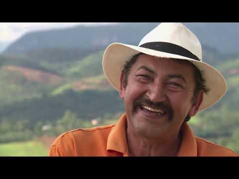 El impacto de la tecnología en la vida de los colombianos. | C33 #ViveDigitalTV