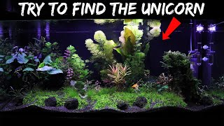 FINDING THE UNICORN in my MYTHICAL AQUARIUM