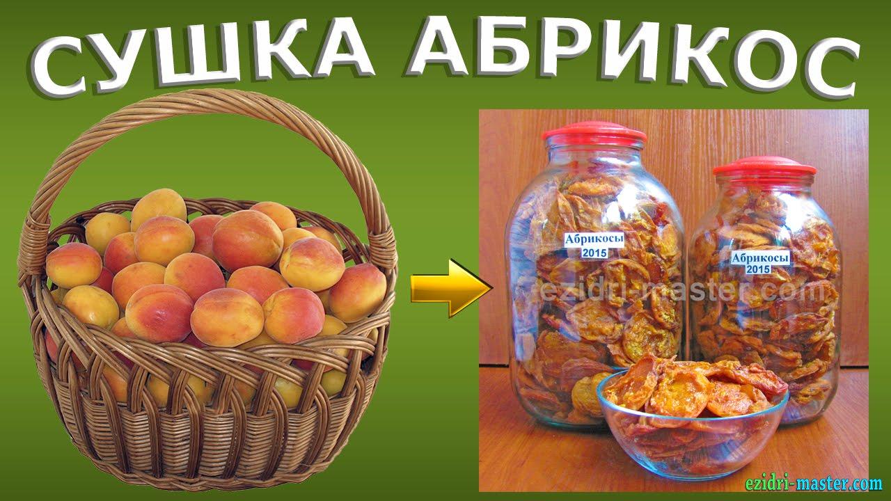 Как сделать с абрикос урюк 253