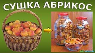 Сушка абрикос – 10 кг. Как сделать курагу в домашних условиях?